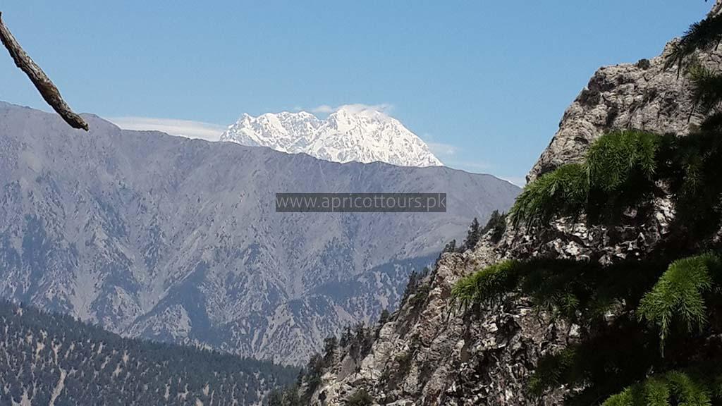 Farmers Only Reviews >> Kalash Valley Chitral Trek (12 Days) - Apricot Tours Pakistan